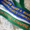 National Fleece Competition