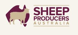 SHEEP_PRODUCERS_AUSTRALIA.JPG